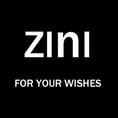Логотип компании zini