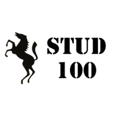 Stud 100 логотип компании